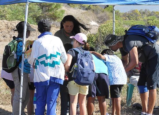 cbc-strandfontein-birdathon-2015-109-march-2015
