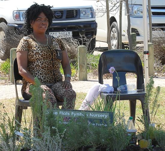 cbc-strandfontein-birdathon-2015-157-march-2015