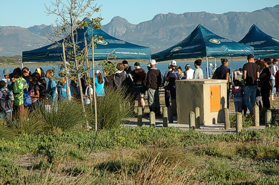 cbc-strandfontein-birdathon-2015-28-march-2015