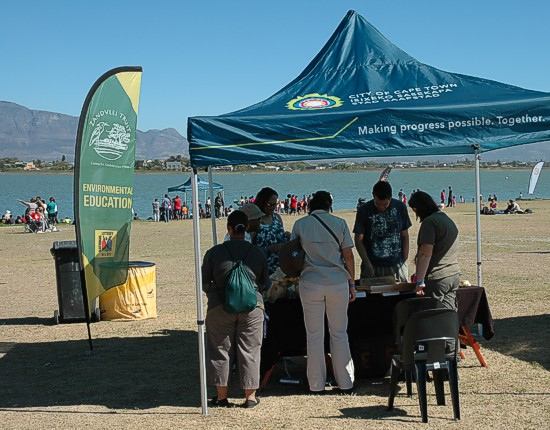 cbc-strandfontein-birdathon-2015-37-march-2015