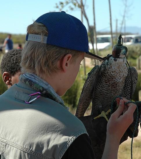 cbc-strandfontein-birdathon-2015-41-march-2015