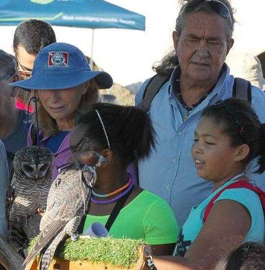 cbc-strandfontein-birdathon-2015-64-march-2015