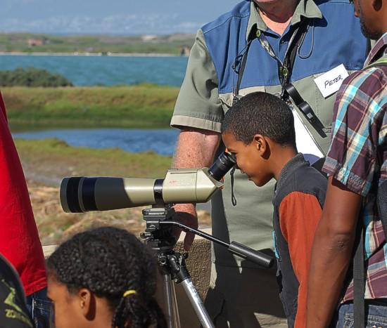 cbc-strandfontein-birdathon-2015-99-march-2015