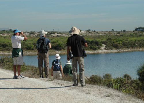Outing to Driftsands Nature Reserve 19 April 2015