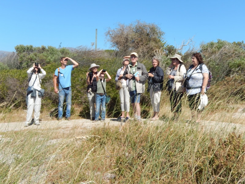 Birders at Rondevlei outing during December 2016