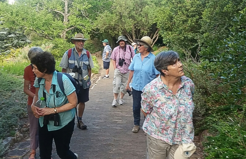Our group today. Kirstenbosch Photograph by Cheryl Faull
