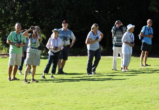 Walking up the slope in the gardens. Kirstenbosch photograph by Marlene Hofmeyer.