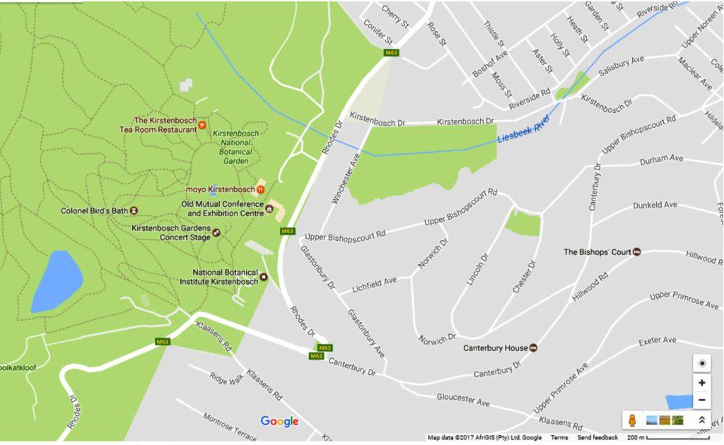 Kirstenbosch Google