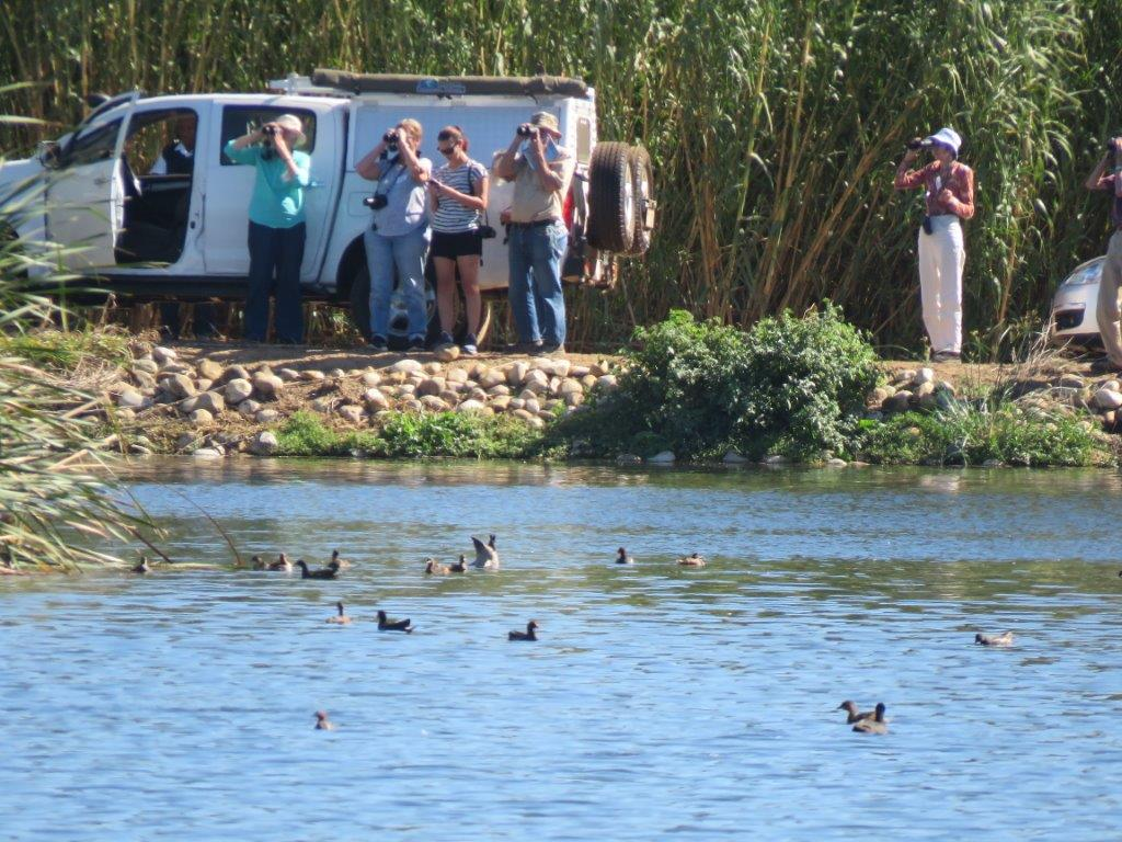 Paarl Bird Sanctuary outing A pan 2017. Photograph by Priscilla Beeton