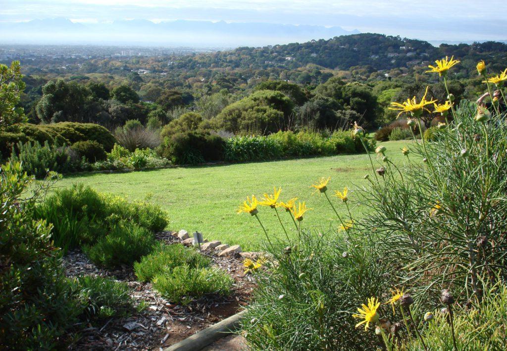 View across the gardens - Mel Tripp