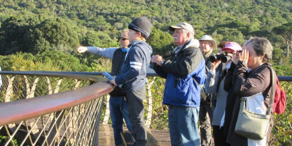 Kirstenbosch Bird Walk – 5 July 2017 by Felicity Ellmore.