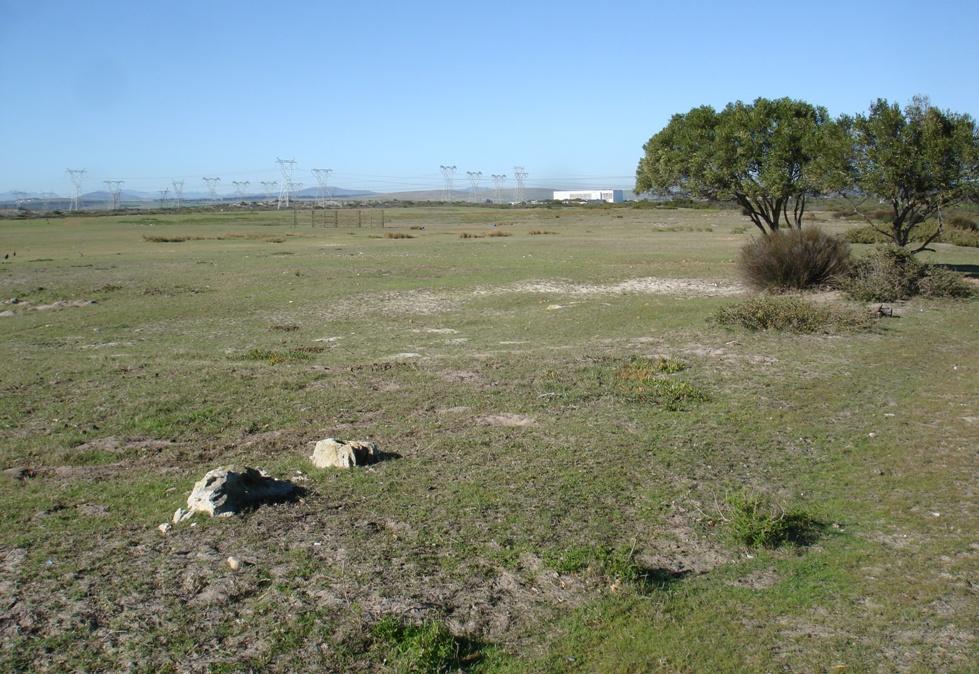 Plains where game often graze