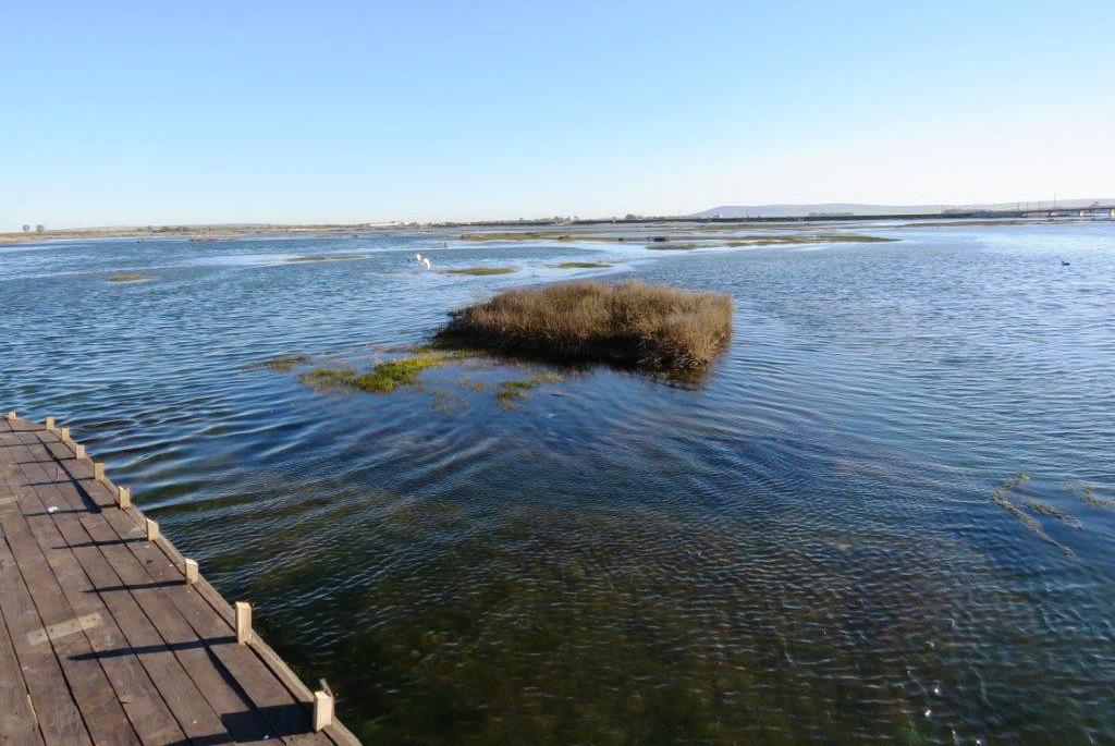 Rivieria Hotel mud flats high tide - Mel Tripp