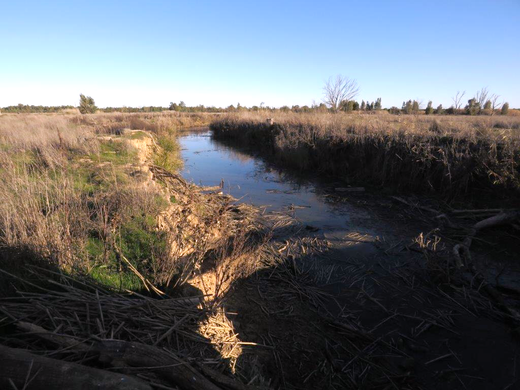 Stream on Kersefontein flood plain - Mel Tripp