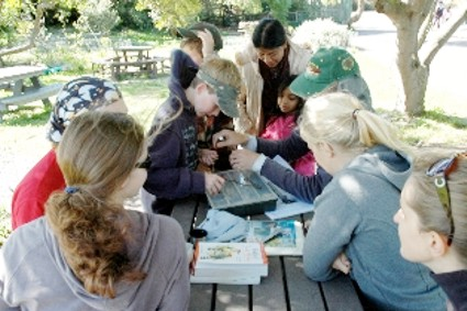 Bird Ringing at Rondevlei Nature Reserve.