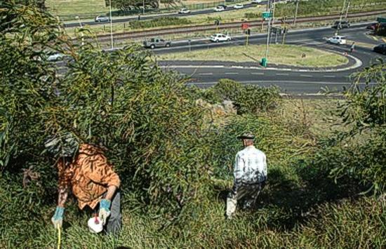 zvt-hack 07 dec 2010
