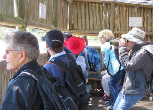 The group at the bird hide. Photograph by Priscilla Beeton