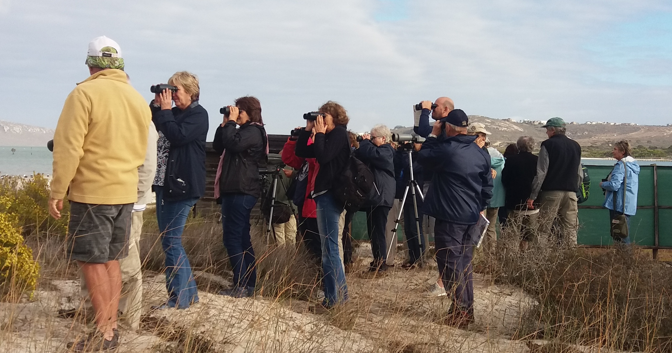 Watching waders at Seeberg Hide Photograph by Karin Wilson