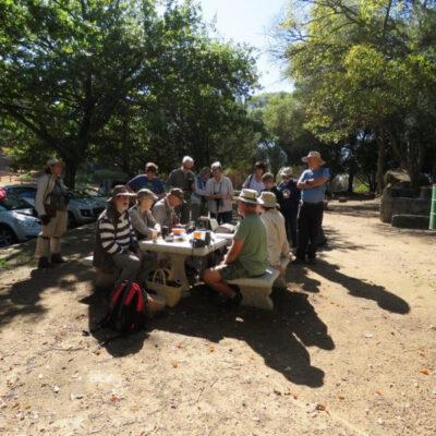 Paarl Wild Flower Garden – 22 April 2018