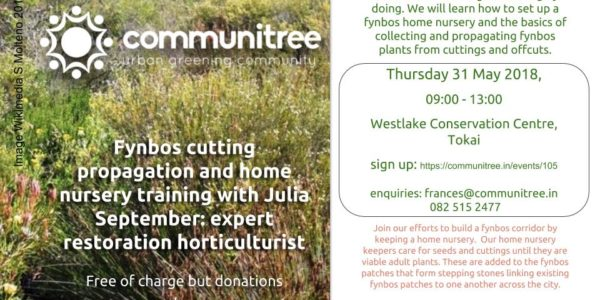 Invitation to take part in Ingcungcu and Communitree projects