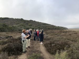 Birding along the Breede River Photograph by Andrew Mayes