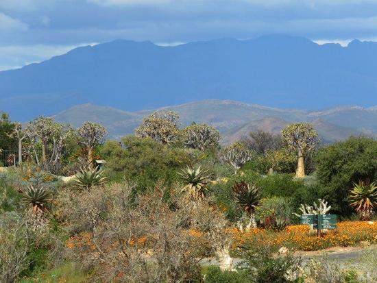 Karoo Botanical Gardens