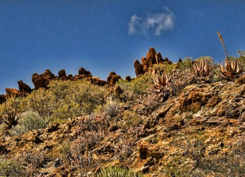 The wonderful rock formations on the sky line.