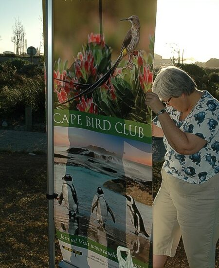 cbc-strandfontein-birdathon-2015-09-march-2015
