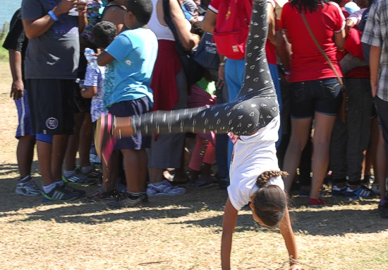 cbc-strandfontein-birdathon-2015-135-march-2015