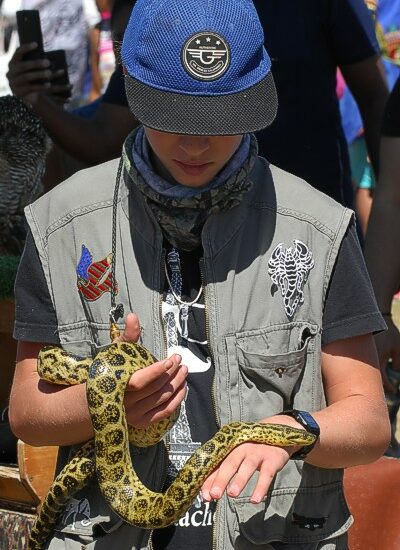 cbc-strandfontein-birdathon-2015-192-march-2015