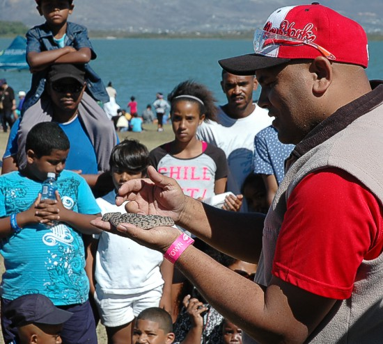 cbc-strandfontein-birdathon-2015-40-march-2015