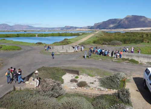 The view from the top of the Bird Information Centre in the centre of the road network of the Birding Area
