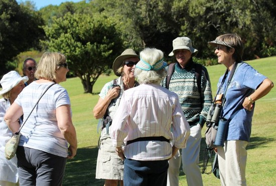There is time to socialise and discuss other things besides birds. Kirstenbosch. Photograph by Marlene Hofmeyer.