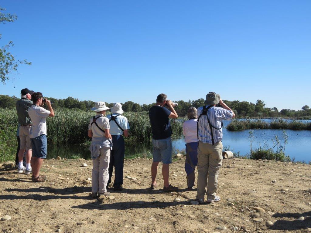 Paarl Bird Sanctuary - C pan from Normans Walk. Photograph by Priscilla Beeton