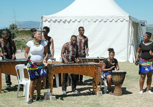 The xylophone and drumming group from Philippi were very good and got the day going with a good African feel and vibe feb 2015 gavin lawson