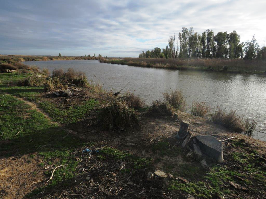 The river at farm Helderwater - Mel Tripp