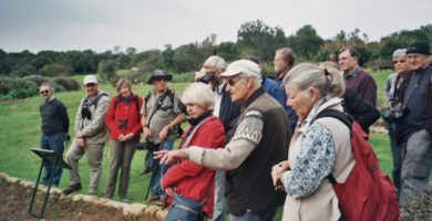 Peter points out young examples of the beautiful Marsh Rose,Photo by Penny Dichmont