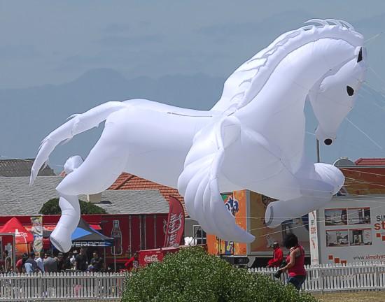zvt-kite fest 02 nov 2014