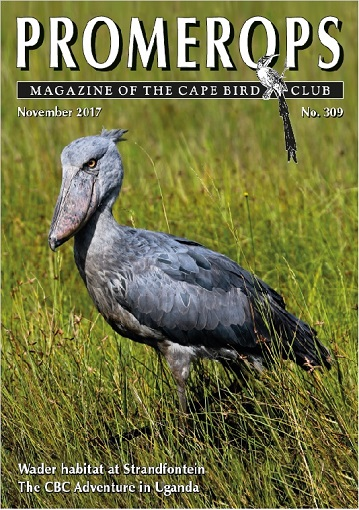 CBC Promerops No 309 cover. Photograph by Johan Schlebusch