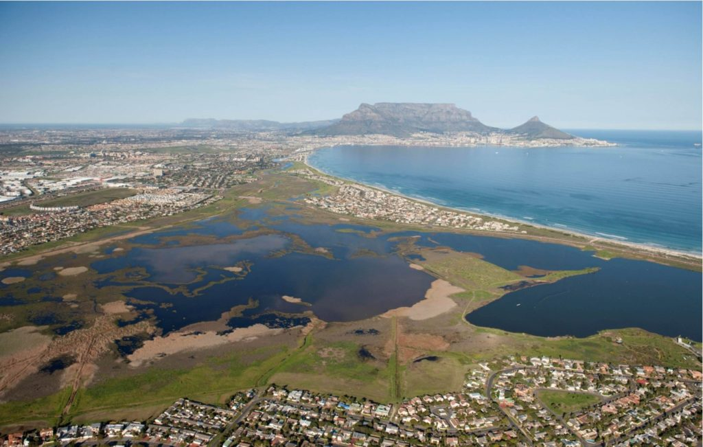 Table Bay Nature Reserve and Rietvlei Wetland