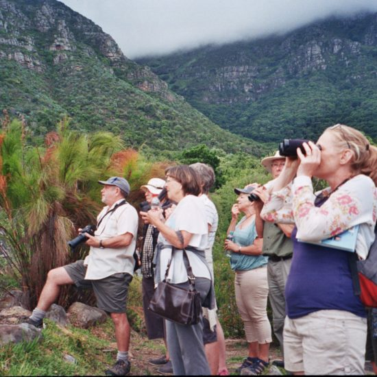 The group at Kirstenbosch 24th January 2018. Photograph by Penny Dichmont.
