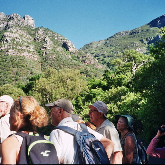 On the bird walk. Kirstenbosch 21 February 2018. Photograph by Penny Dichmont