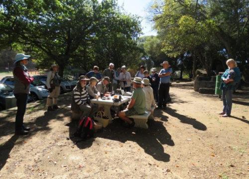 Paarl Wild Flower Garden. Doing the list. Photograph by Priscilla Beeton