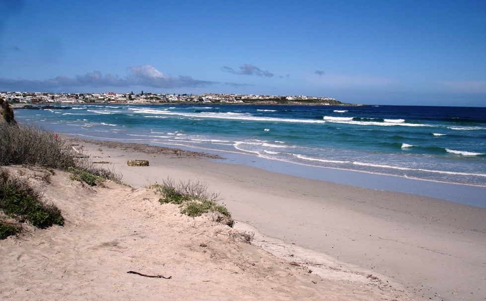 View from dunes to Yzerfontein village and harbour - Mel Tripp