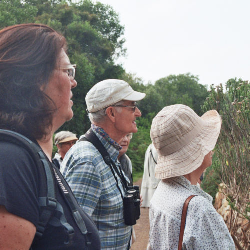 Peter Steyn points out some features of the Orange-breasted Sunbird. Photograph by Penny Dichmont.