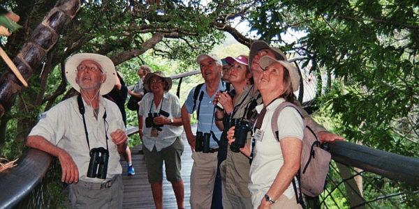 Kirstenbosch Bird Walk –  12 December 2018 led by Felicity Ellmore.