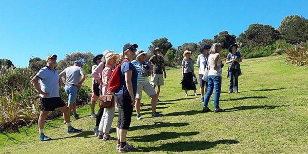 Kirstenbosch Bird Walk –  29 December 2018 led by Linda Hibbin.