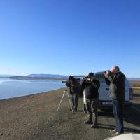 Looking at birds on Oudebaaskraal dam wall. Photograph by Joy Fish