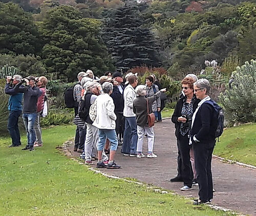 cbc kirstenbosch walk 01 LH may 2019