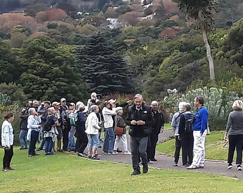 cbc kirstenbosch walk 03 LH may 2019